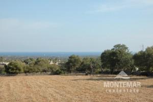 Baugrundstück in Alqueria Blanca mit Meerblick