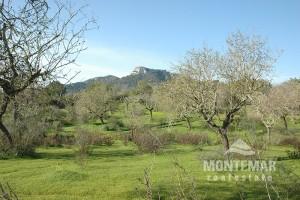 S'Horta - Baugrundstück am Golfplatz Vall d'Or