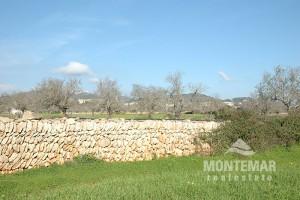 Baugrundstück in Calonge