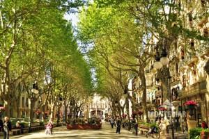 Palma - Wohnung in begehrter Altstadtlage