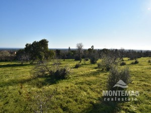 Baugrundstück mit Meerblick und genehmigtem Projekt in Alqueria Blanca