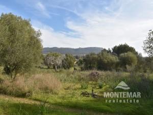 Grundstück mit Bauprojekt zwischen Portocolom und Felanitx