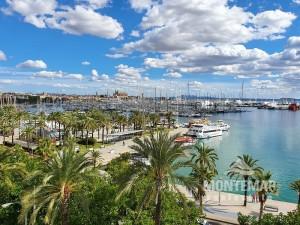 Palma/Paseo Marítimo - Schönes Apartment mit modernem Design und spektakulärer Aussicht