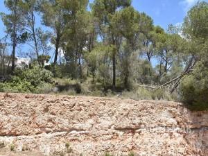 Grundstück mit bestehender Baugenehmigung in der Cala Santanyí