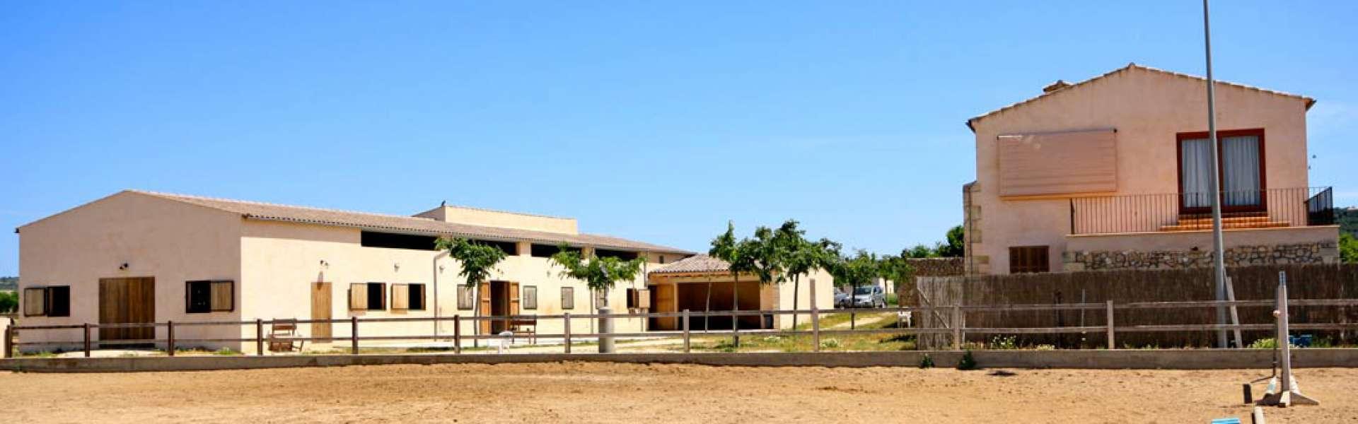 Manacor - Finca für Pferdeliebhaber mit viel Land