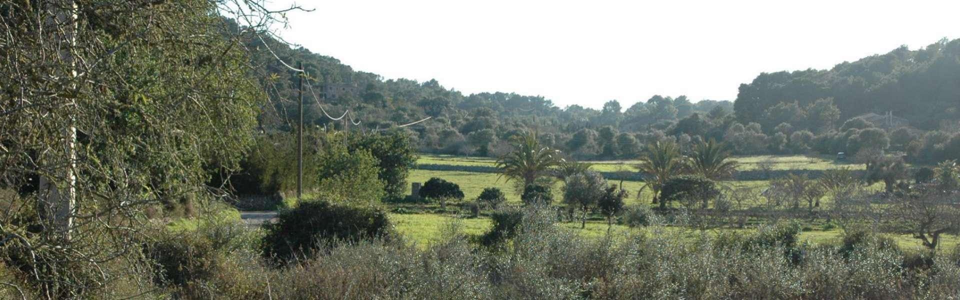 Baugrundstück in Es Carritxó
