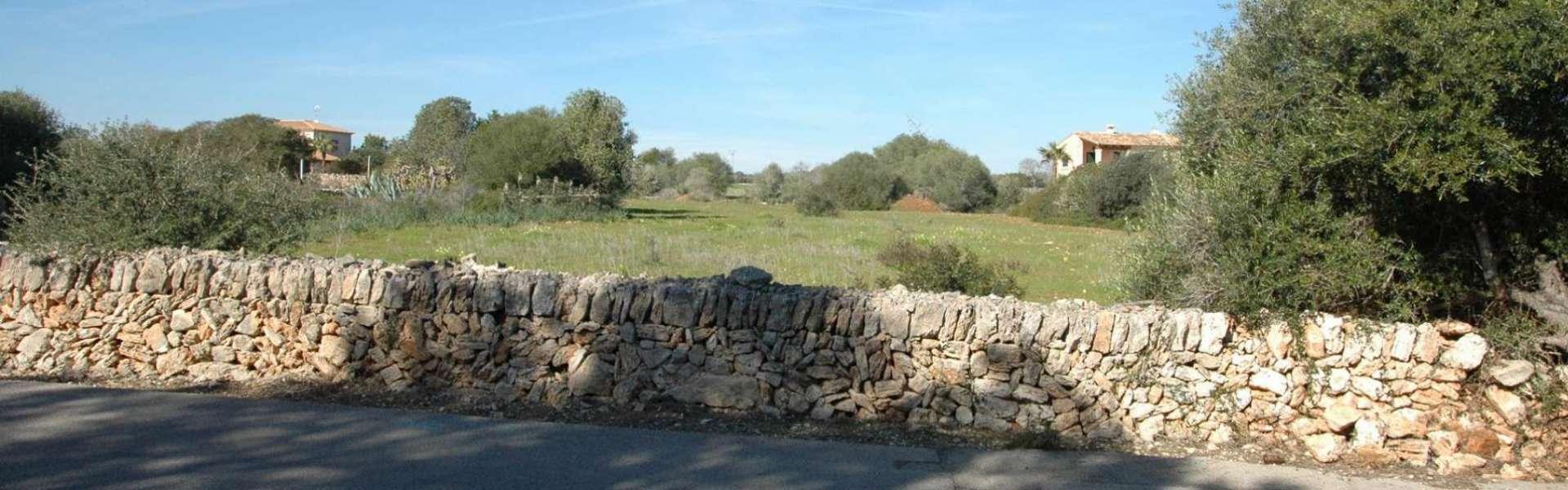 Cala Santanyi - Baugrundstück zu kaufen