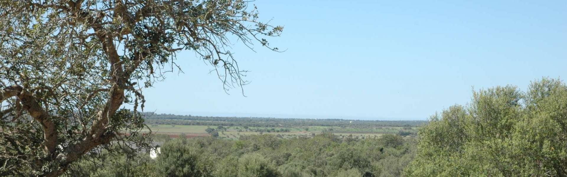 Santanyi - Baugrundstück mit Blick nach Cabrera und genehmigtem Projekt