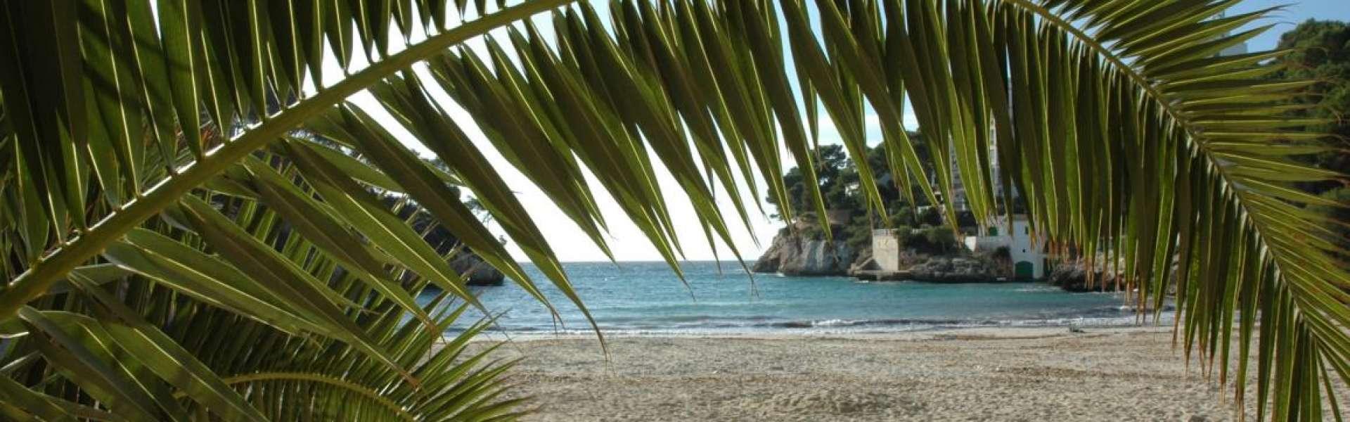 Investitionsmöglichkeit in Cala Santanyi