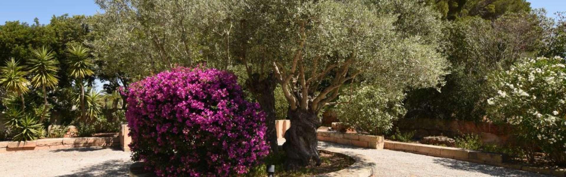 Meerblick-Anwesen nahe Colonia Sant Jordi