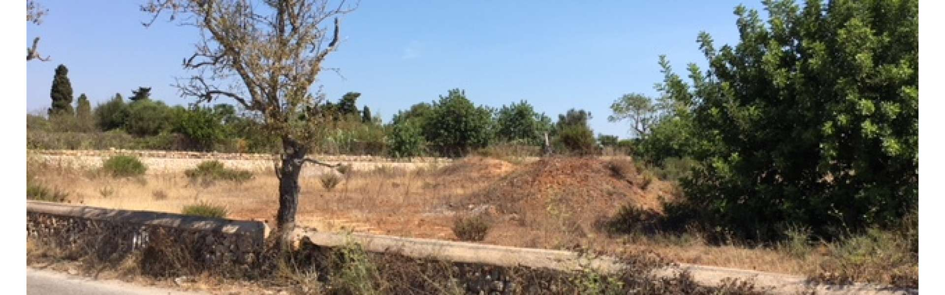Finca-Baugrundstück in Porto Petro zum Kauf