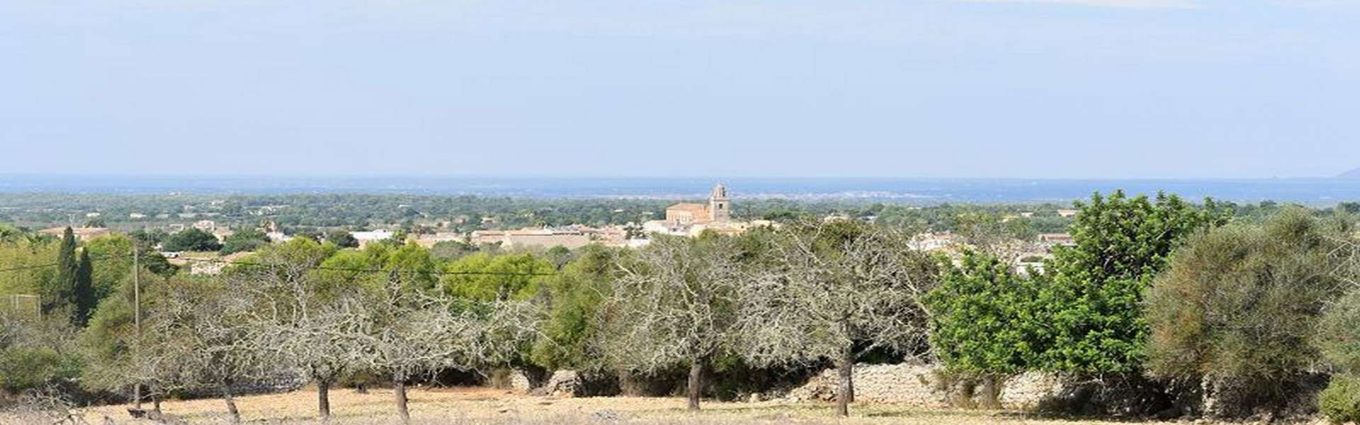 Cas Concos - Finca-Baugrundstück mit Panoramablick und Lizenz