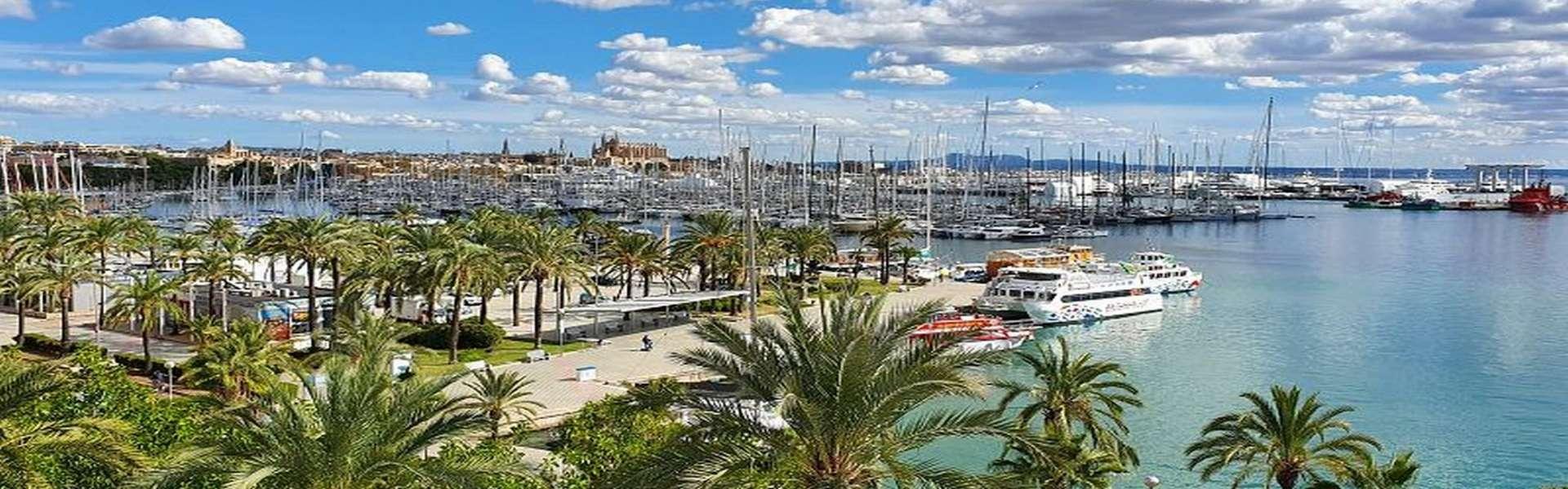 Palma/Paseo Marítimo - Apartment mit wunderschönem Ausblick zu verkaufen