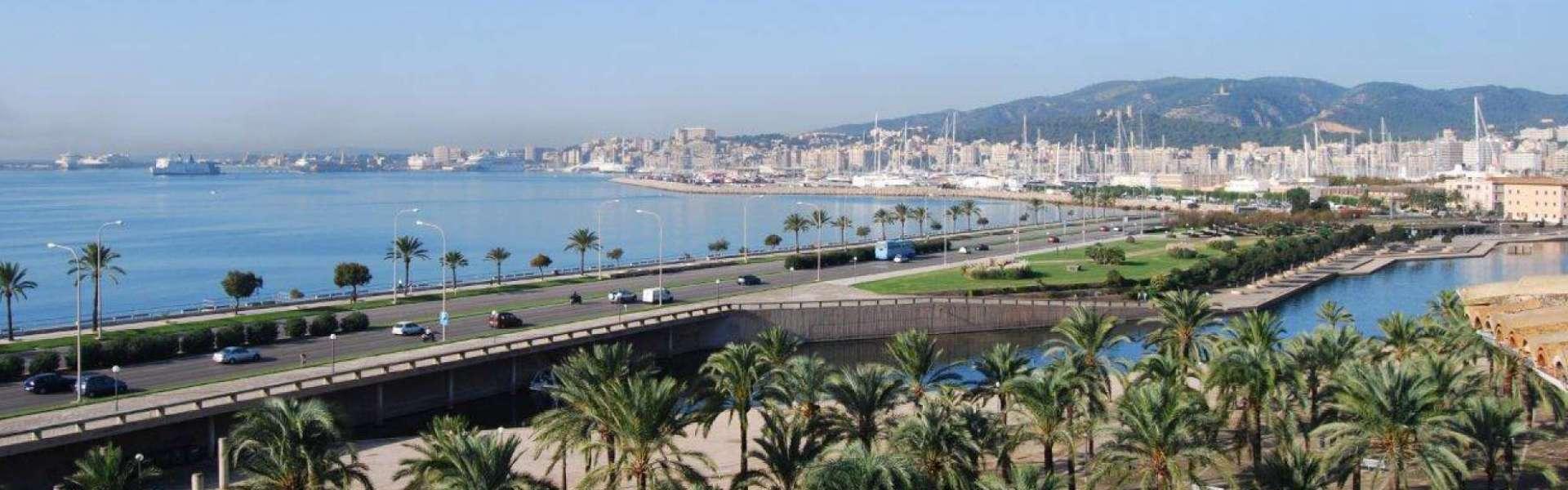 Palma - Penthouse mit Blick auf Kathedrale und Meer zum Verkauf