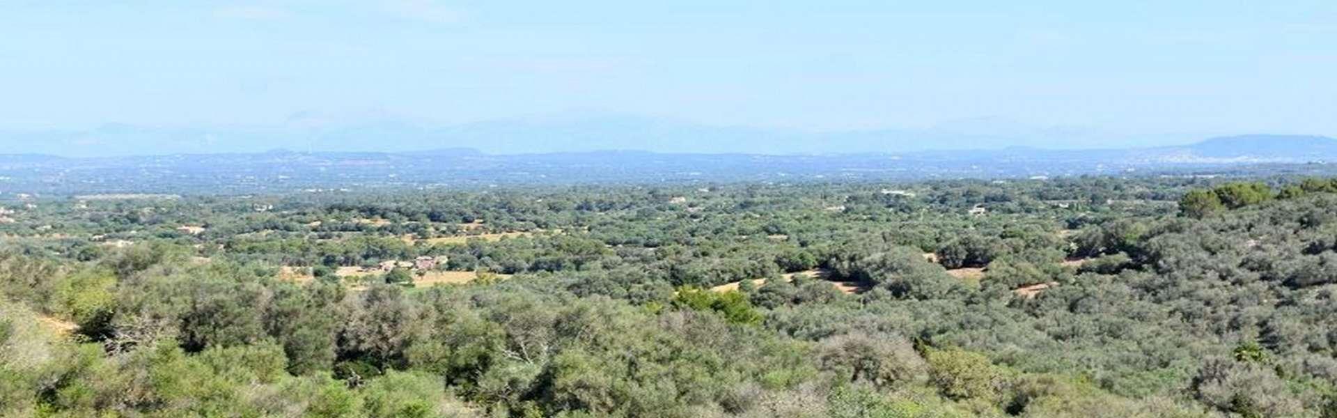 Cas Concos - Typisch mallorquinische Finca mit traumhaftem Panoramablick